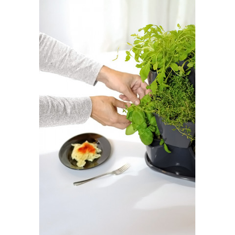 Kaskádový květináč na bylinky - COUBI grafit